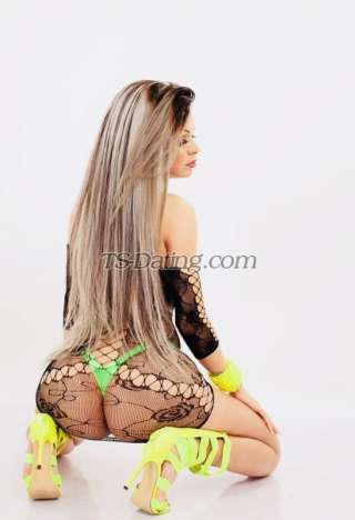 Shemale-barbielly-4071343