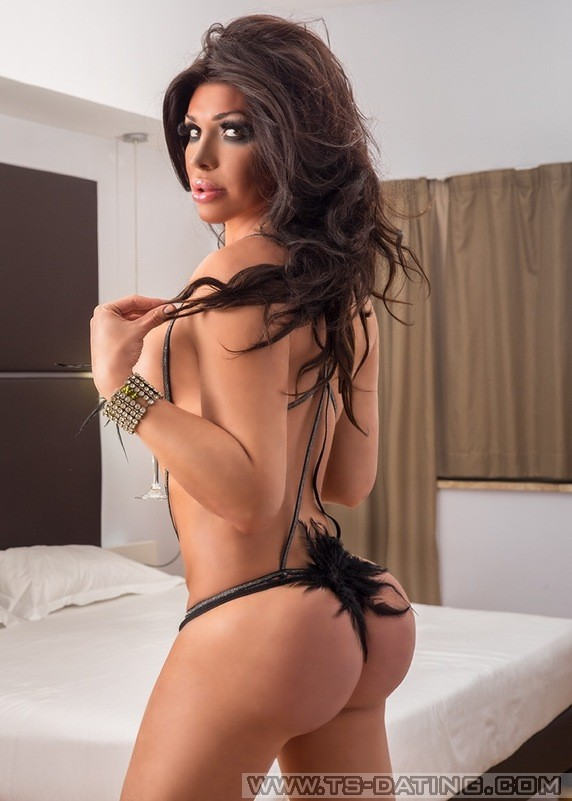 latina shemale escort cheetah