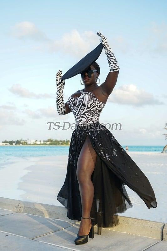 Nina jackson ts Shemale Stars