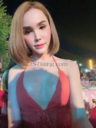 Ladyboy Thailand Shemale