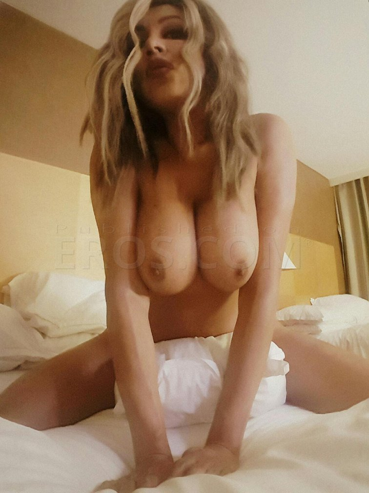 Arizona shemale escorts nude