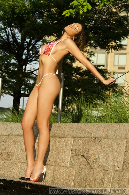 Shemale escorts new york Best Ladyboy and Shemale Escorts directory